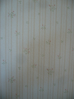 2Fトイレ壁紙