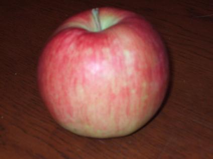 奇跡のりんご