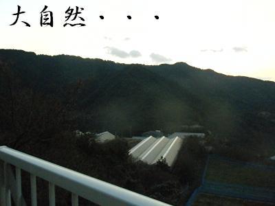 DSCF9525.jpg