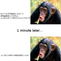 vlomoshiro005701.jpg