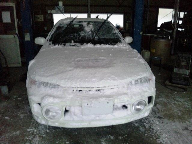 雪まみれ。