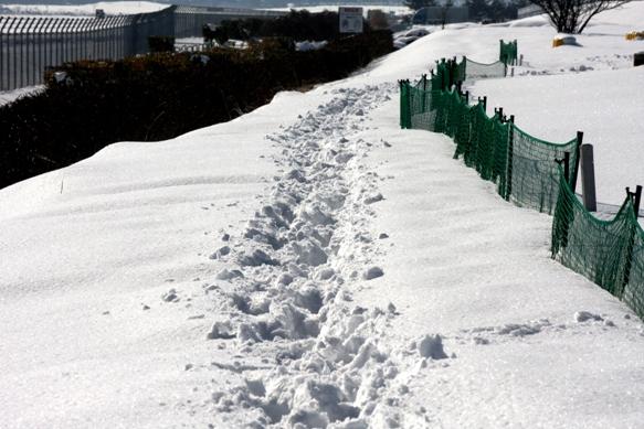 雪深い空港周辺