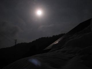 20110319-20生杉 006
