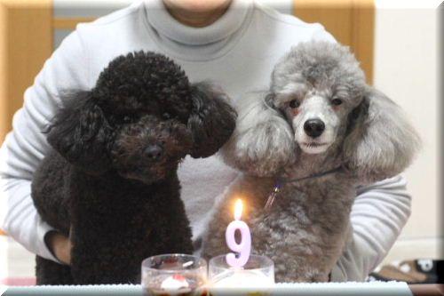 空・お誕生日♪