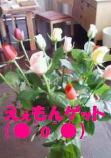マルシェのバラ