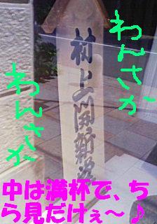 ちらっっ(開新堂)