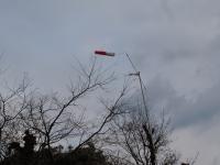2月24日 強風