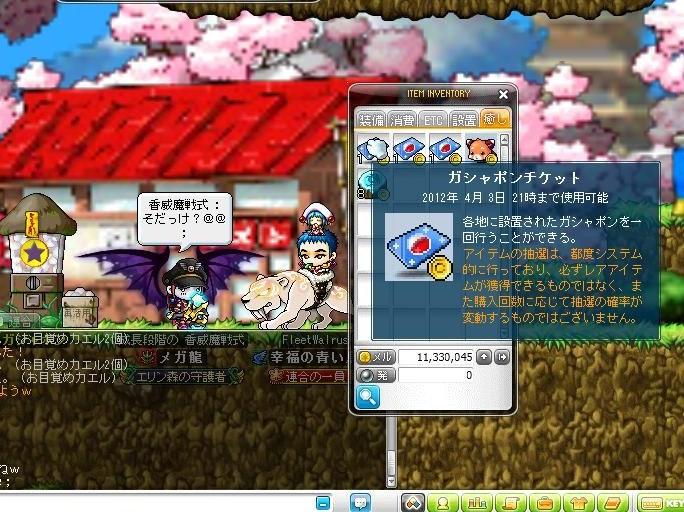 Maple120304_212015.jpg