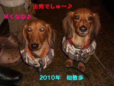 CIMG0792_20100101234513.jpg