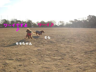 CIMG0837_20100107183744.jpg