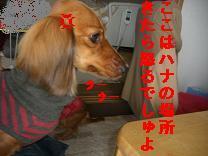 CIMG0874.jpg
