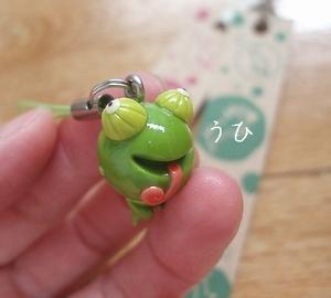 nanbayachameleon01.jpg