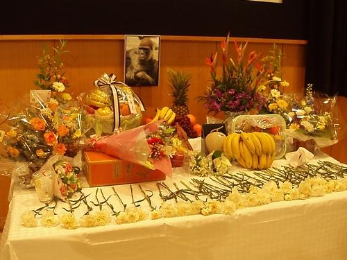 sayounaragon20091122.jpg