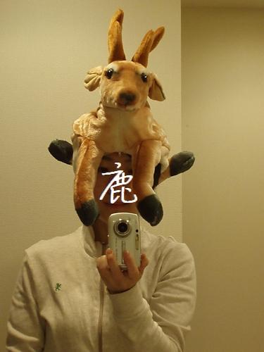 shikakaburimono00.jpg