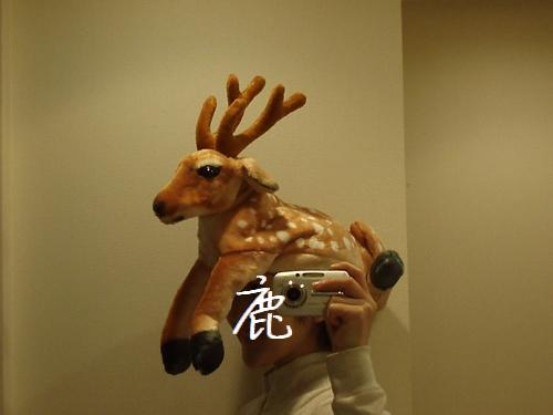 shikakaburimono01.jpg