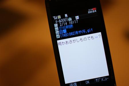 DSC07642.jpg