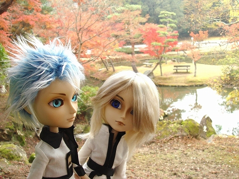20091124-momiji-012.jpg