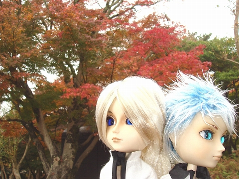 20091124-momiji-039.jpg