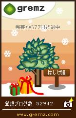 12月20日グリムス夕方