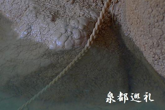 20091129sueyoshi04.jpg