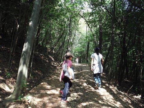 蘇原自然公園遊歩道20130929の1