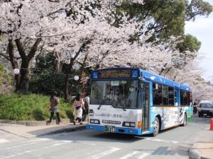 P3250159無料シャトルバス