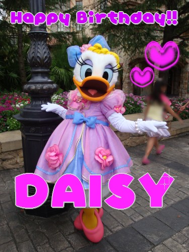 2011birthday-daisy-2.png