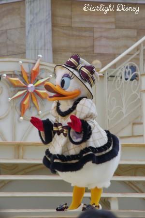 daisy2_20101224221113.jpg