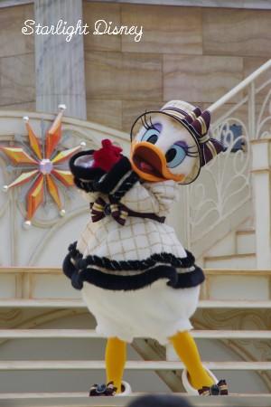 daisy3_20101224221121.jpg