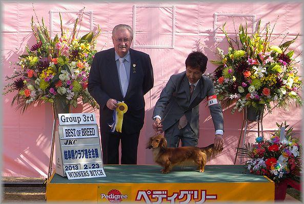 2012.2.25 ルナちゃん1
