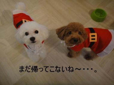 ・搾シ狙convert_20101226023558-22