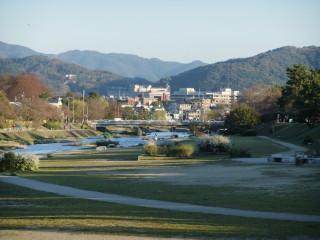 賀茂川の桜の様子確認(出雲路橋付近)_04_2011-04-04