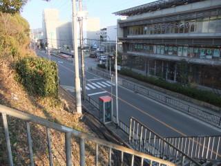 京都深草_08_2009-02-21