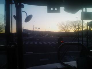 サムイ…。寒波キタ!!(1)_2010-01-14
