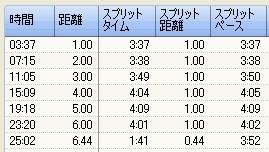 20100121_split02.jpg