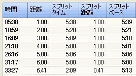 20100121_split01.jpg