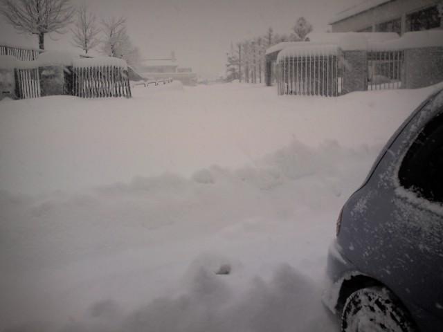 2011 01 16 雪・・・