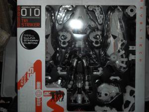 TS001.jpg