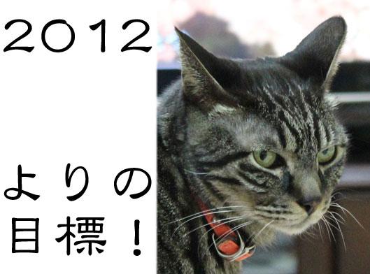 01082_20120102190613.jpg