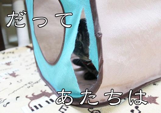 01084_20120102190817.jpg