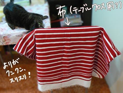 kurosu_20100311100851.jpg