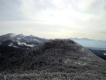 20110203-6.jpg