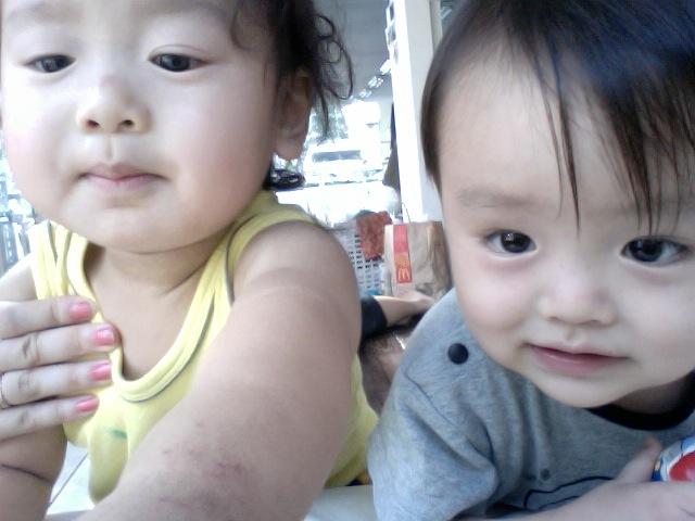 写真(2010-07-05 15.51) #4