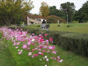 緑地公園4