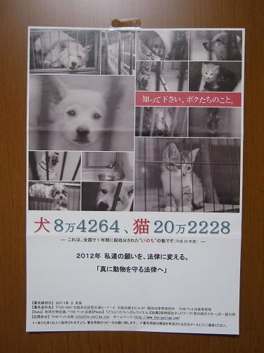 042_20110210153848.jpg