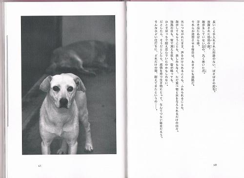 CCF20130307_00000 (3)