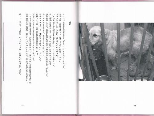 CCF20130307_00000 (4)