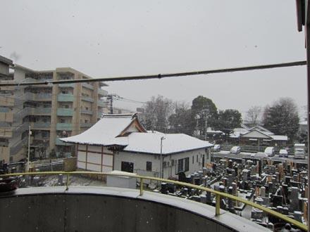 東京はまたもや雪①