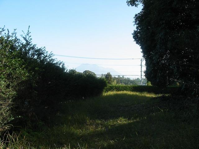 akibanomori1