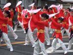 2011yosakatsu1